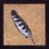 Feather: Peregrine Falcon - 7x7