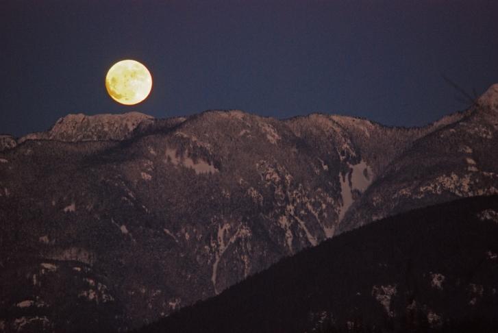 wolf-moon-rising-1000