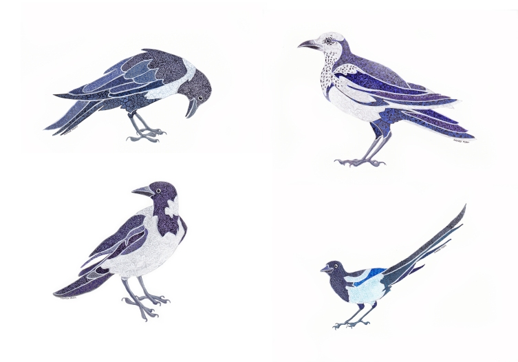 set of pied corvid cards